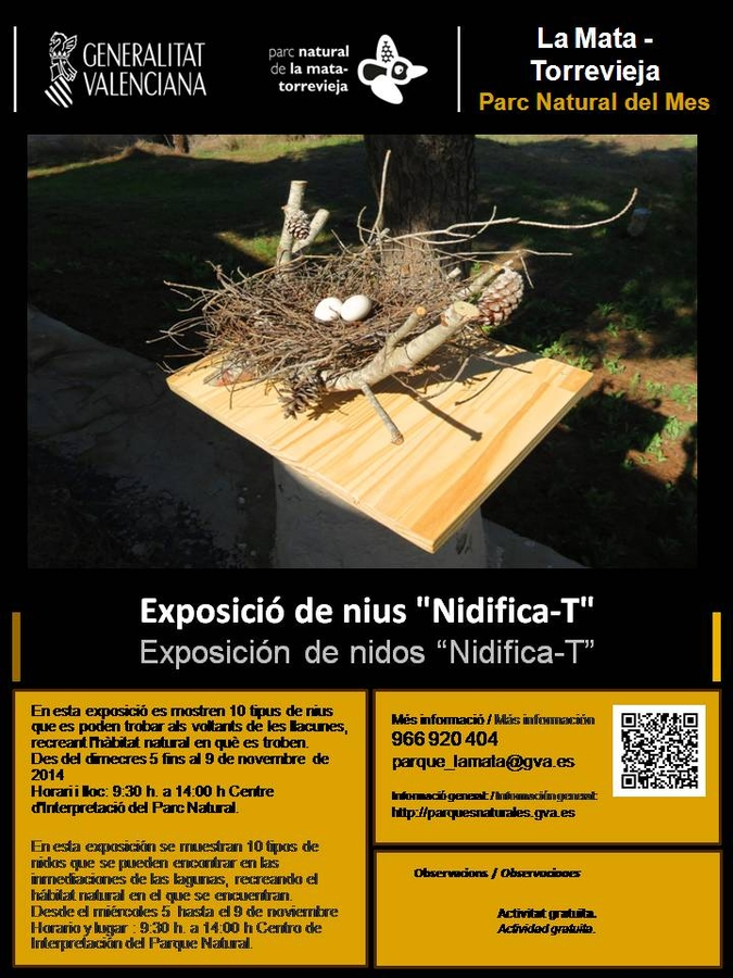 November activities in the La Mata-Torrevieja natural park